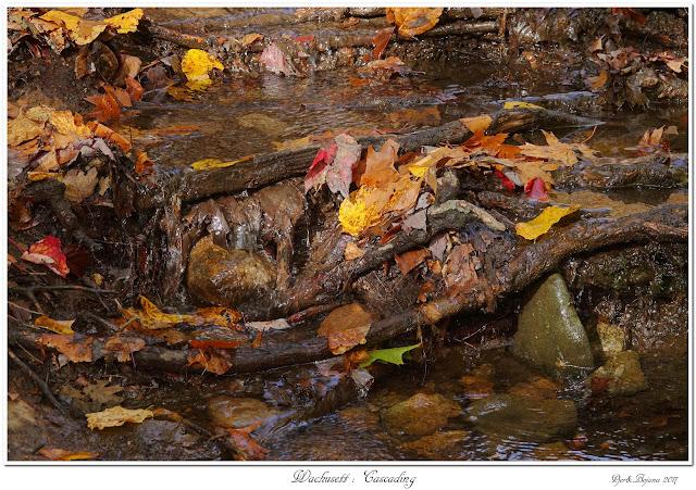 Wachusett: Cascading