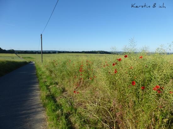 Landschaftsfoto Feld Feldweg Hunsrück