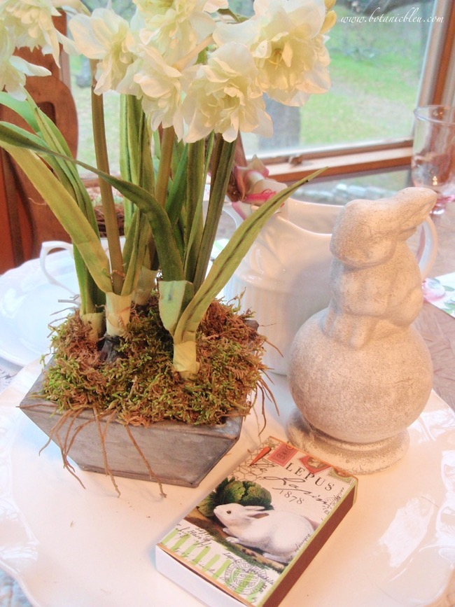 french bunny tablesetting narcissus