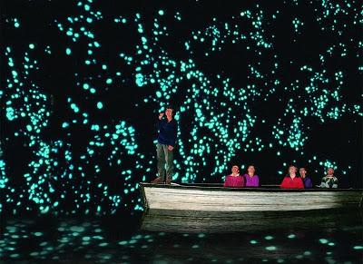 Waitomo Glowworm : Gua Ajaib Yang Dipenuhi Kilauan Bintang di New Zealand