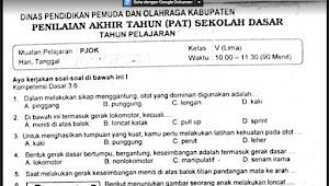 Soal Ulangan PJOK Kelas 5 Semester 2 Kurikulum 2013