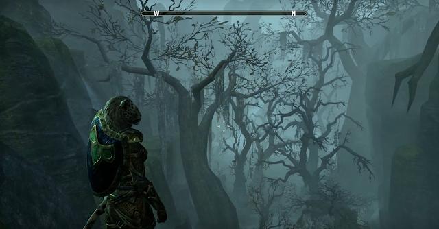 The Elder Scrolls Online también aprovechará los 4K de PS4 Pro desde el primer día