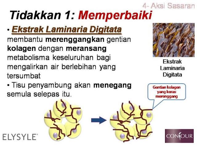 gentian kolagen,ekstrak laminaria dititata,selulit