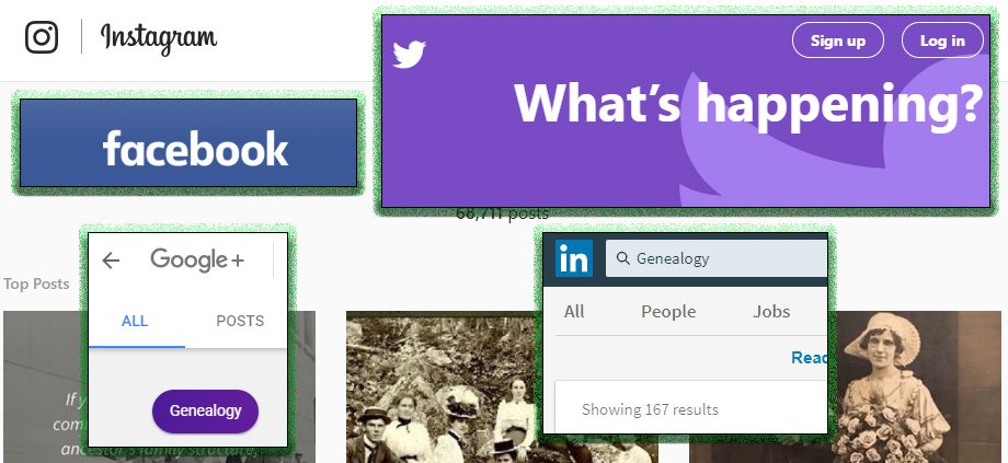 Fortify Your Family Tree How to Build Your Social Genealogy Network - build family tree online