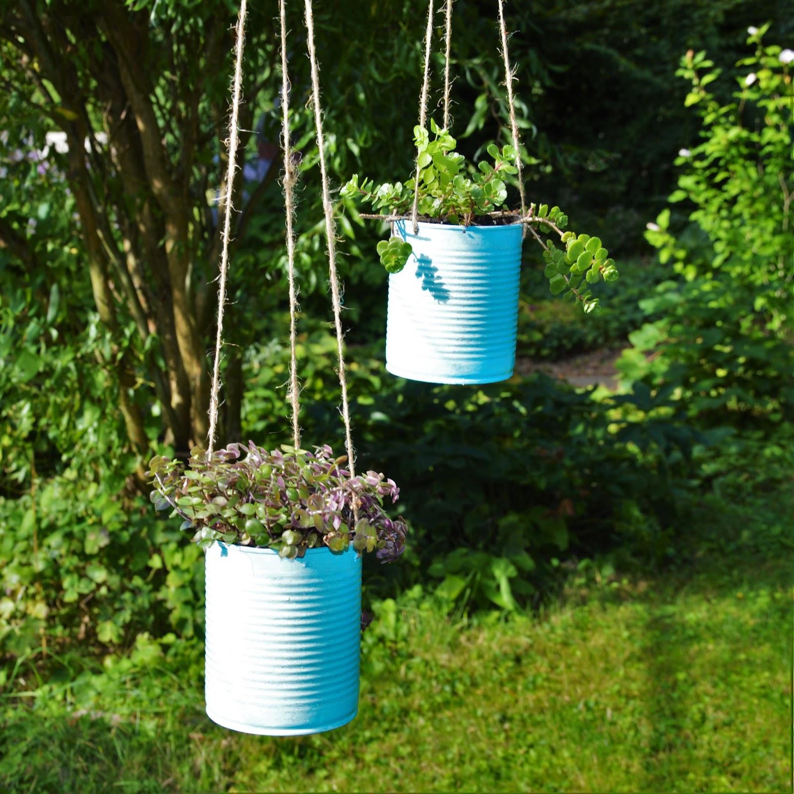 Ines felix kreatives zum nachmachen h ngepflanzen in dosen - Hangepflanzen garten ...
