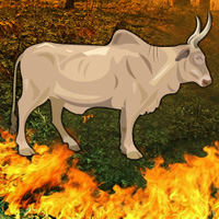 Wowescape Fire Forest Bull Escape