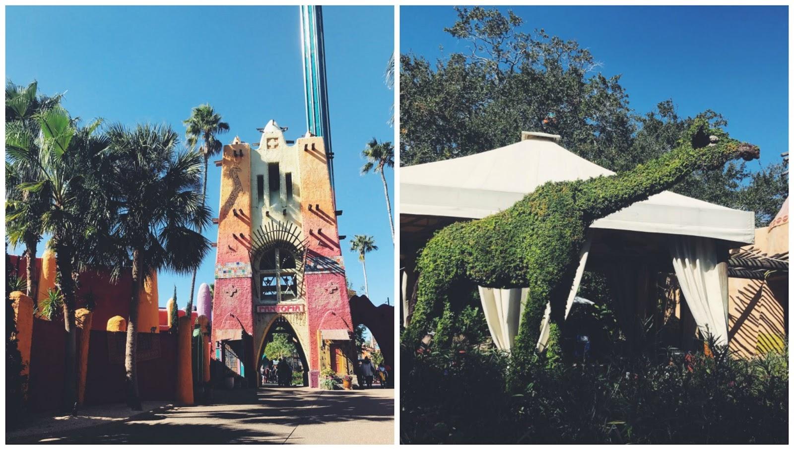 Busch gardens Tampa2