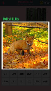 осенью идет лиса с мышью в зубах, которую поймала