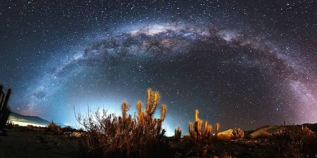 Cielo estrellado sobre cactus