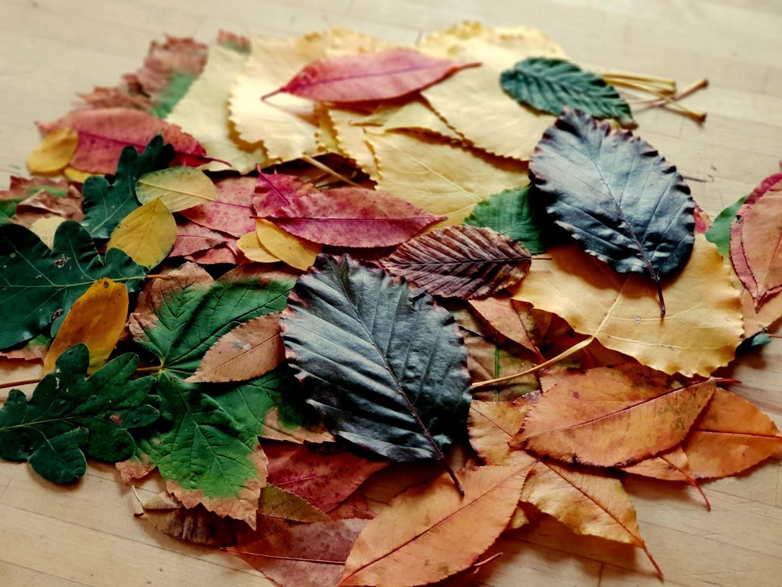 Diy herbstbasteleien mit kindern wundersch ne for Herbstbasteleien mit kindern basteln