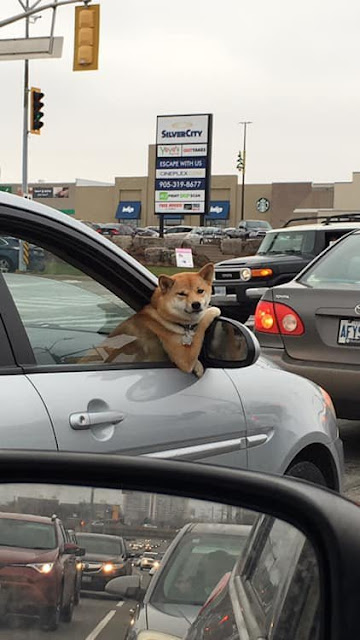 Hangin' out the passenger side Of his best friend's ride Trying to holla at me
