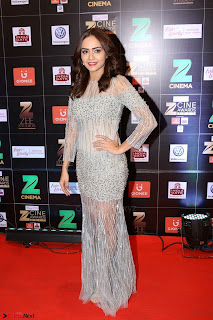 Bollywood Celebrities on the Red Carpet Of Zee Cine Awards 2017 Exclusive 103.JPG