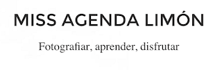 Miss Agenda Limón