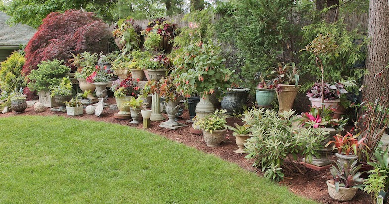 Fortnam Gardens: Crazy About Containers