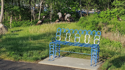 a rafter of turkeys left the Sculpture Park and the new bench as I approached