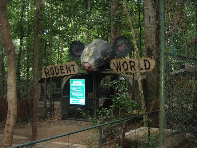 Rodent World