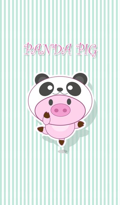 Panda pig