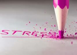 Effect of stress essay