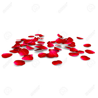 30714076 Petals of roses fall on a floor The isolated background Stock Photo