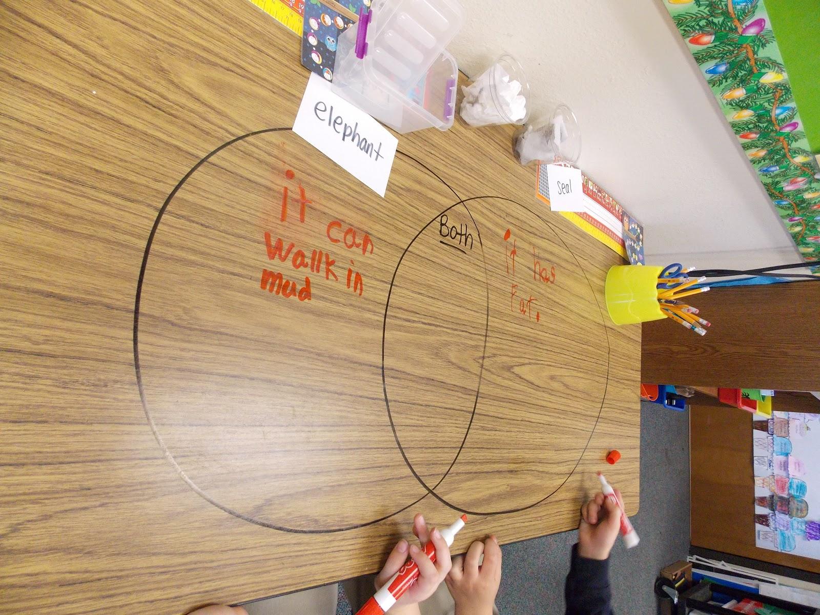 hight resolution of venn diagram in teaching