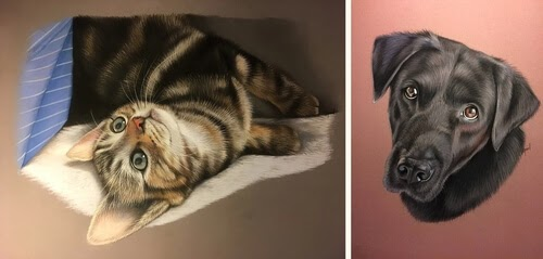 00-Virginie-Agniel-Pastel-Drawings-of-Cats-and-Dogs-www-designstack-co