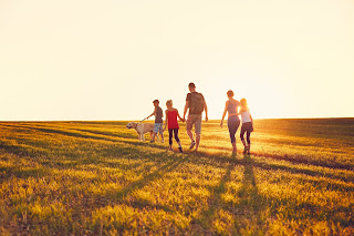 Family walking through a meadow