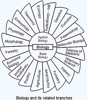 branches of biology etymology of scientific terminology