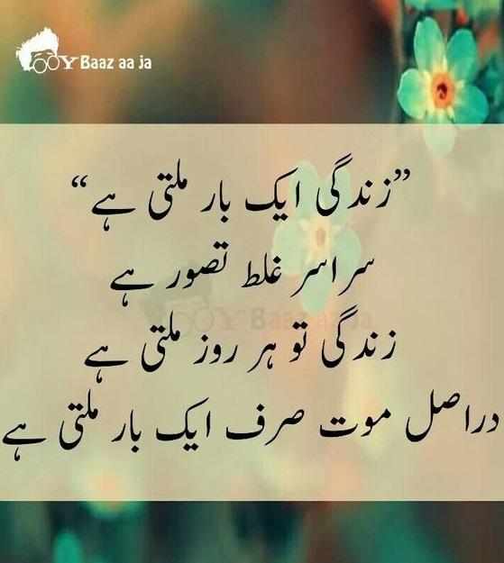 Urdu Quotes On Zindagi Weed Quotes