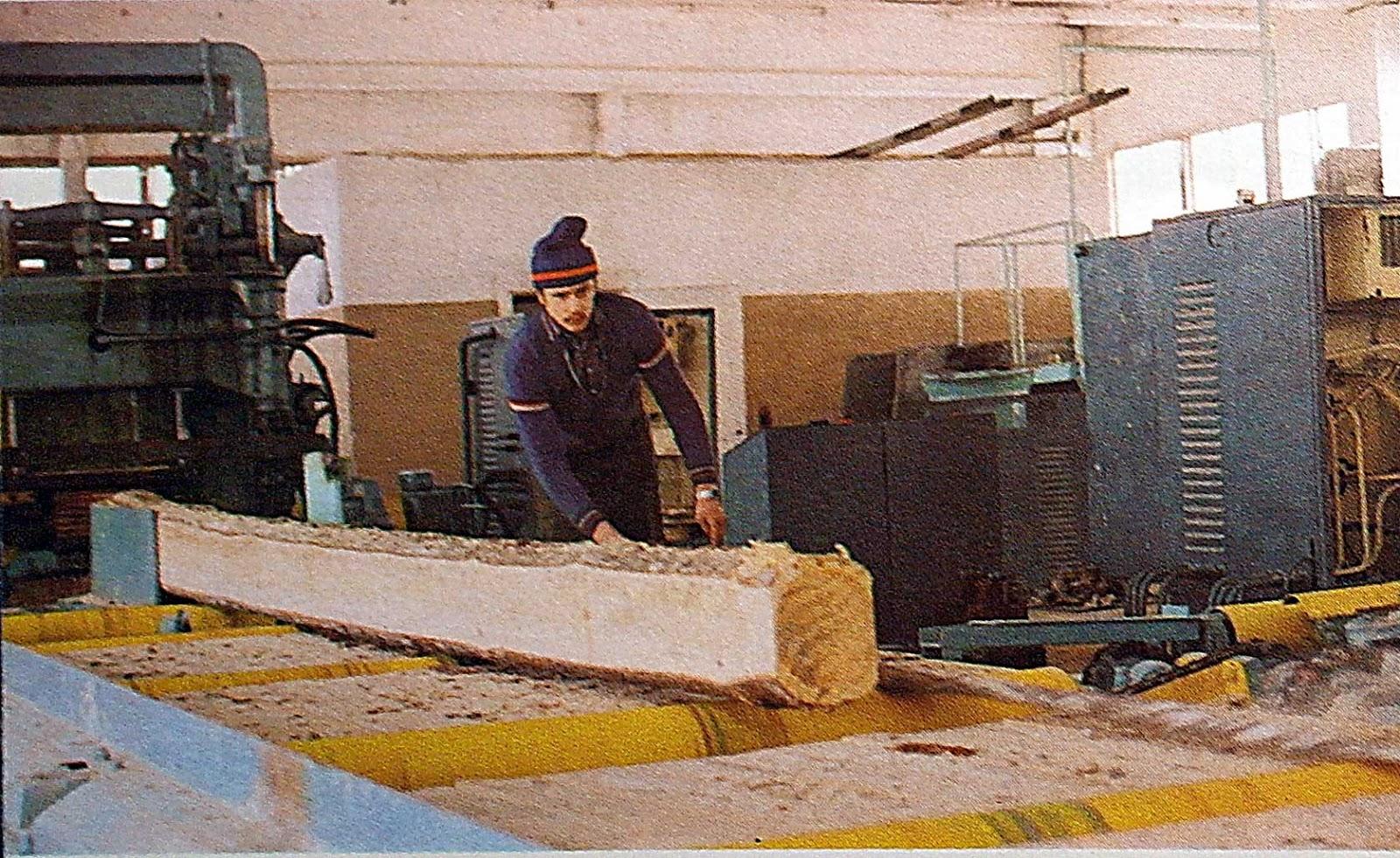 Подмосковный краевед Щелковский учебно опытный лесхоз лет назад В лесхозе имеются два лесопитомника по выращиванию посадочного материала как хвойных пород так и древесно кустарниковых пород для озеленения населенных