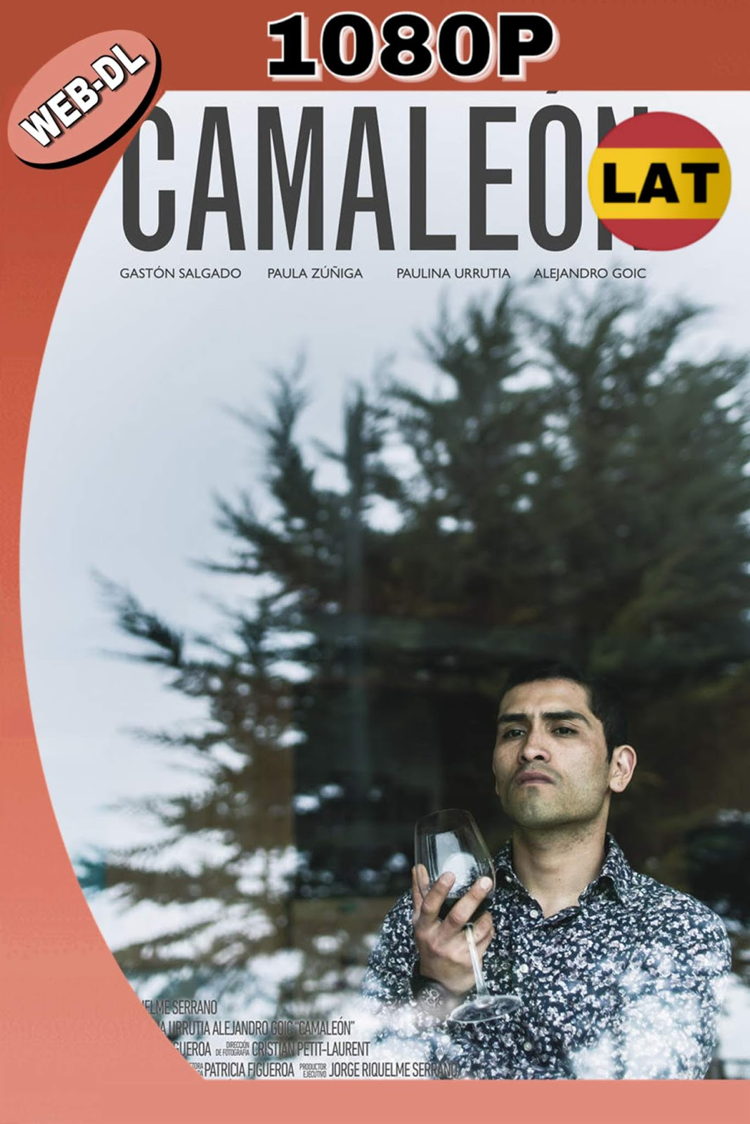 CAMALEÓN 2016 LATINO HD WEB-DL 1080P MKV