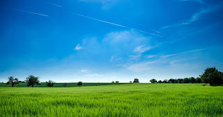 Neighbourhood Plan, Secretary of State rejects planning appeal due to landscape concerns: image of field and sky
