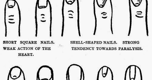 Hand Reading Fingernail Shape Meaning