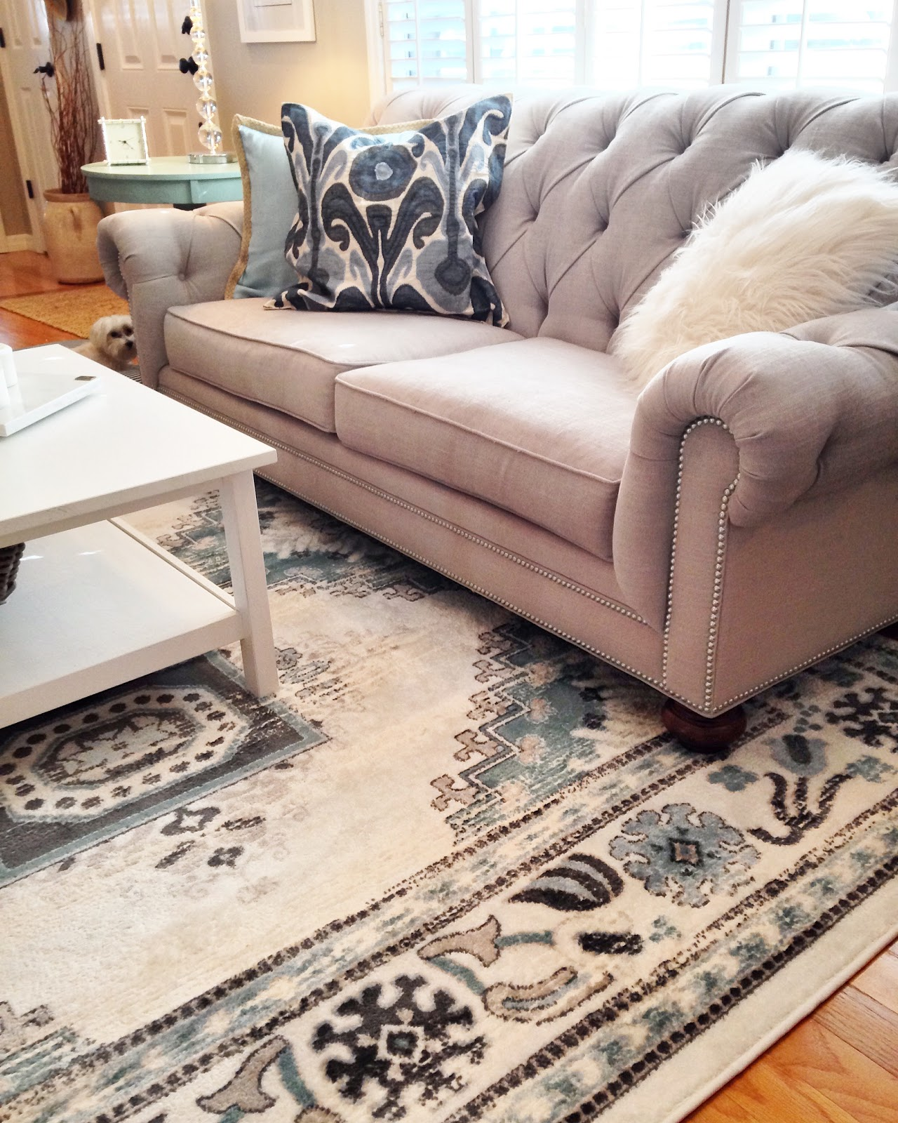 chadwick sofa pet cover with straps the story saturday april 2 2016