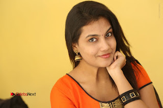 Telugu Actress Chandana Stills in Salwar Kameez at Karam Dosa Movie Press Meet  0123.JPG