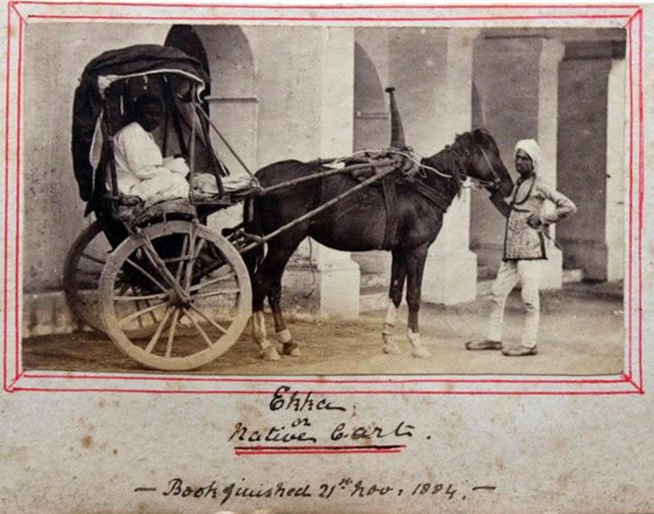 Ekka (Native Carriage) - Vintage Photograph, India 1884