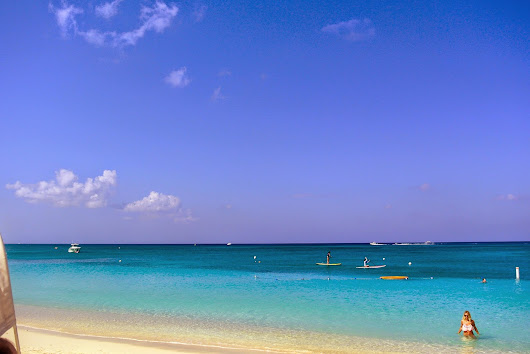 stowaways: grand cayman islands
