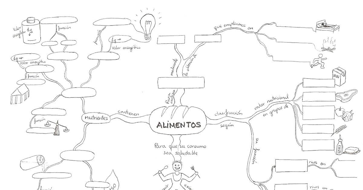 Creatividad En Física Y Química Mapa Mental Sobre Alimentos