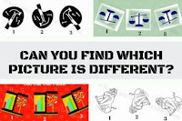 Can you find which Picture is different?