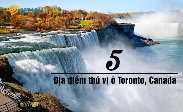 Trải nghiệm 5 địa điểm thú vị ở Toronto Canada