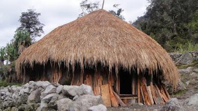 Rumah Adat Honai . Rumah Adat Papua
