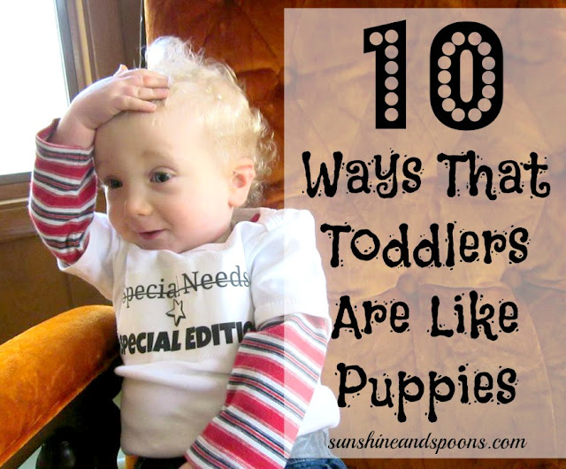 10 Ways Toddlers are Like Puppies