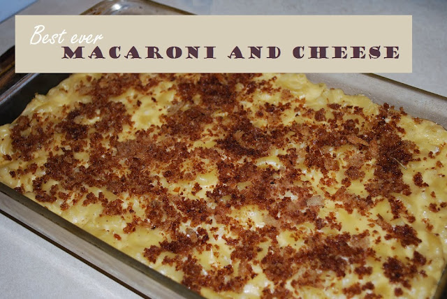 A step-by-step tutorial to make macaroni and cheese from scratch.