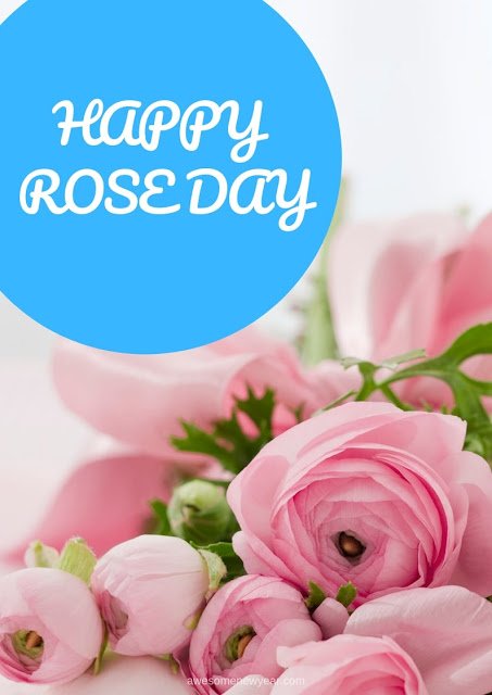 Rose Day Photos