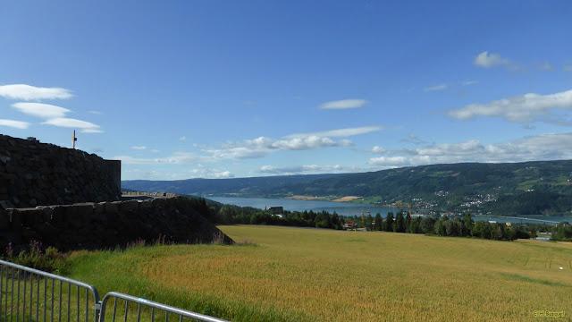 Heuvel landschap in Noorwegen met een rivier en bossen