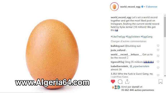 world_record_egg egg_gang