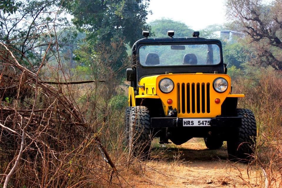 activities near delhi