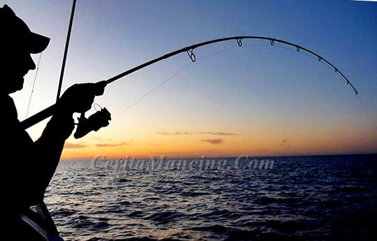 Mancing Ikan Jarang Gigi Monster Ikan Jenahak Besar