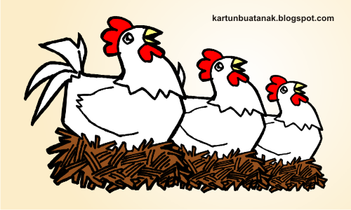 Gambar Ayam Kampung Jantan