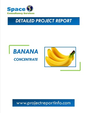 Banana Concentrate Manufacturing Project Report