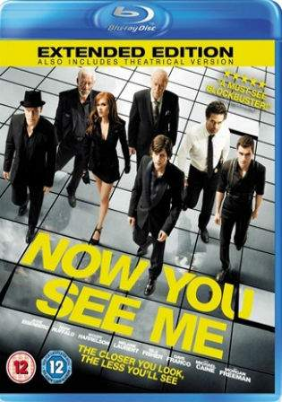 Now You See Me 2013 BRRip 480p EXTENDED Dual Audio 350Mb